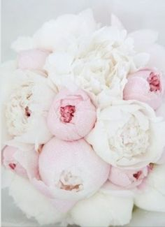 I absolutely love this bouquet of peonies! I always imagined my bouquet to be full of sweet smelling springtime flowers. Flowers such as peonies, lilacs, and pastel roses. White Peonies Bouquet, Hydrangea Bouquet, Pink Peonies, Ranunculus Flowers, Bouquet Flowers, Hydrangeas, Fresh Flowers, Beautiful Flowers, Christian Marriage