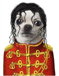 What?? You think I stole this look? #michaeljackson