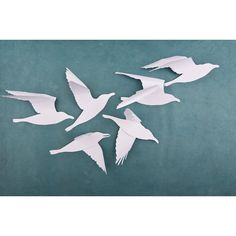 A Flock of Seagulls White Bird Wall Art, 6 White Wall Birds, Beach... (5.170 HUF) ❤ liked on Polyvore featuring home, home decor, wall art, white wall art, white home decor, beach scene wall art and bird home decor