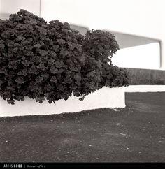 © Ola Buczkowska- Przeździk, Lanzarote / ART IS GOOD www.artisgood.com