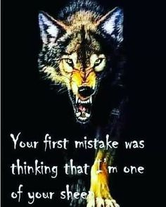 Tattoo wolf ideas spirit animal inspiration 44 ideas for 2019 Great Quotes, Quotes To Live By, Me Quotes, Motivational Quotes, Inspirational Quotes, Trust No One Quotes, King Quotes, Warrior Quotes, Warrior Spirit