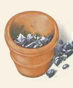 Great garden tip! Use charcoal to fill large pots: it's lightweight, reduces the amount of potting soil you need, improves drainage, and can be reused.