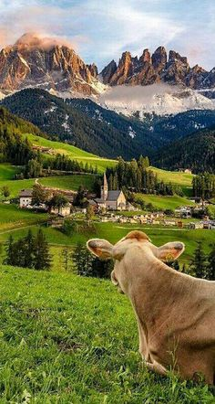 Val di Funes, Dolomites, Italy Photo by Vittorio Delli Ponti Best Vacations, Vacation Trips, Places To Travel, Places To Visit, Photos Voyages, Nature Photos, Wonderful Places, Beautiful Landscapes, Travel Pictures