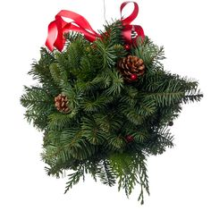 NOBLE FIR KISSING BALL - 8 INCHES The 8 inch Kissing Ball is a bundle of fresh Noble Fir, Port Orford Cedar, festive red berries and pine cones topped with a red ribbon (included). It is eight inches in diameter. Holiday Wreaths, Holiday Crafts, Holiday Fun, Festive, All Things Christmas, Christmas Holidays, Christmas Ideas, Christmas Goodies, Merry Christmas