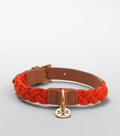 Even though I know a braided Tory collar would be ridiculously indulgent, I still kinda want one if I get a girl fur baby :).