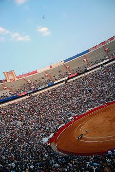 Plaza de Toros,  México City,  MEXICO.  (by Omar Omar, via Flickr)