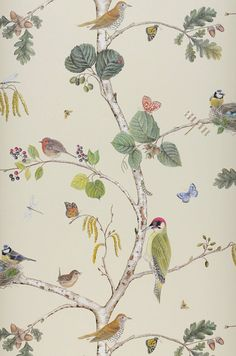 1000 images about wall paper on pinterest b roll - Largeur laie papier peint ...