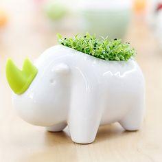 South Korea Fleshy Flower Pot Cartoon Animal Design Bonsai Pots Office Desktop Decoration Home Decor