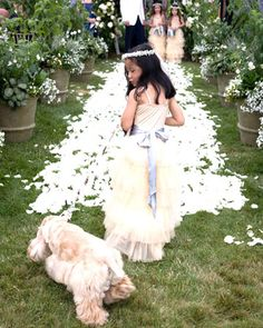 This flower girl was escorted down the aisle by the bride's cocker spaniel, Joey
