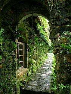 Like walking the path into a secret garden