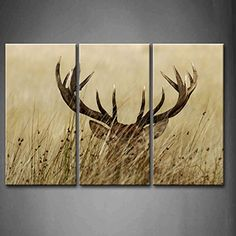 3 Panel Wall Art Deer Stag With Long Antler In The Bushes Painting The Picture Print On Canvas Animal Pictures For Home Decor Decoration Gift piece (Stretched By Wooden Frame,Ready To Hang) First Wall Art http://www.amazon.com/dp/B00MWSQJ5S/ref=cm_sw_r_pi_dp_zKoPvb037EFHE