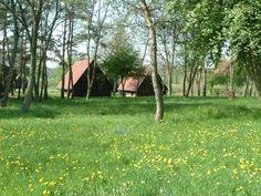 Vadása Camping