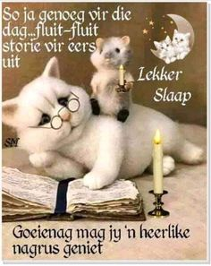 Good Morning Wednesday, Afrikaanse Quotes, Goeie Nag, Morning Inspirational Quotes, Forest Fairy, Good Night Quotes, Special Quotes, Morning Greeting, Cute Quotes