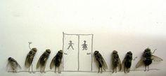 Faire de l'art avec des mouches mortes Magnus Muhr