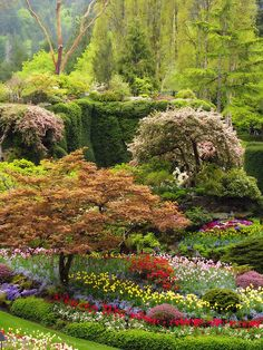 The Butchart Gardens in Brentwood Bay on Vancouver Island, Canada-I have wonderful memories there as a child!