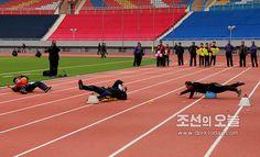 제47차 예술인체육대회가 진행되였다 (1)-《조선의 오늘》