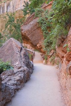 This easy, accessible canyon hike at Zion National Park should be added to your travel bucket list ASAP. It's perfect for families, photographers, and beginners. Utah Vacation, Vacation Places, Vacation Trips, Day Trips, Places To Travel, Vacations, Utah Parks, Utah Adventures, Utah Hikes