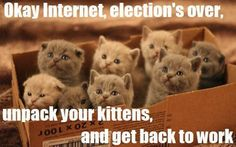 @Amy Coppage...unpack your kittens, and get back to work.