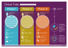 Alzheimer's Research UK's infographic about the different phases of clinical trials