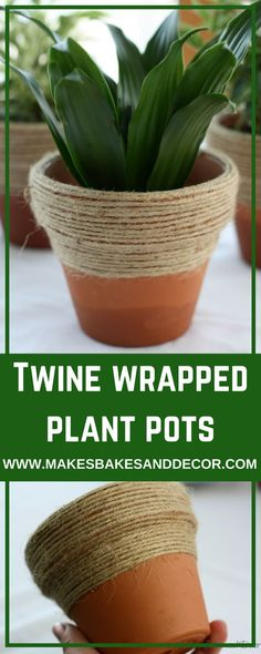 A DIY for twine wrapped plant pots from Makes, Bakes and Decor. See how to make these DIY decorated plant pots. A really easy craft.