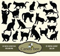 Digital Cat Silhouette Clip Art Black Kitty Silhouette Clipart Scrapbooking - Instant Download SAJ-706 by CandyBeeDesigns on Etsy https://www.etsy.com/listing/182338282/digital-cat-silhouette-clip-art-black