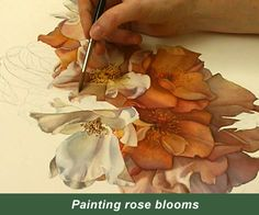 One-on-One Watercolor Workshops with Susan Harrison-Tustain – for all skill levels