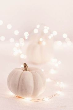 Fantastic Totally Free Bts wallpaper iphone wallpapers fall Ideas Suggestions Pumpkins in many cases are beautiful round, bright fruit, and in fall they must not be lacking parti