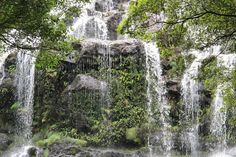 Nelson #Falls #Tasmania Beautiful Gifts, Most Beautiful, Beautiful Places, Southport, Tasmania, Ocean Waves, Continents, Waterfalls, East Coast