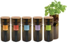 to sell at farmers market - up-cycled hydroponic indoor herb gardens