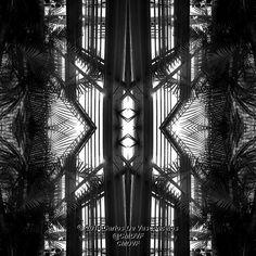 Jaula de Palmeras. 2/4. Carlos De Vasconcelos. CMDVF. #CarlosDeVasconcelos #CMDVF #Diseño #Ilustración #Arte #Artista #BlancoyNegro #Jaula #Palmera / #Design #Illustration #Art #ArtWork #Artist #BlackAndWhite #bw #bnw #Cage #Palm Illustration, Animation, Black And White, Drawings, Artwork, Pictures, Painting, Image, Design
