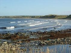 Short articles with images telling about the Scottish Shores and Beaches where the materials for Mermaid Jewellery have been found. Gin Distillery, Craft Gin, Mermaid Jewelry, Scotland, Trail, Tours, Beach, Water, Outdoor