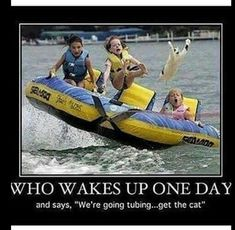 I laughed way too hard at this!!!