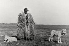 Rudolf Balogh, Shepherd with his Dogs (Gelatin silver print), Hortobágy, c. 1930.