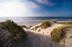 Camber-dune-summer.jpg (850×565)