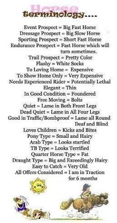 Horse Terminology, love it.  #equine_equine