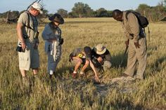 Photos - This adventurous walking safari allows guests to get a real feel for Africa by getting their feet on the ground for a genuine trail experience. Safari, Trail, Wildlife, Africa, Walking, Explore, Adventure, Feelings, Couple Photos