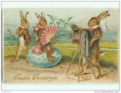 Postcards / bunny - Delcampe.net