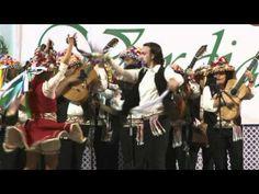 ▶ Fiesta Mayor de Verdiales 2011. Panda La Copla. Baile de Pareja.mpg -