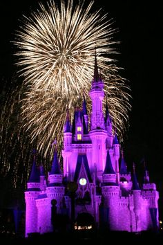 You're never too old for Disney World...