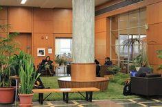 Projeto traz a natureza para dentro da Universidade