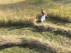 Hay In A Day - Part 1 - YouTube (POSM Note: I This young lady knows what she's doing & makes quick work of this hay field. :)