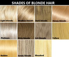 Information about shades of blonde hair dye at dfemale.com, beauty ...