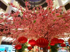 Chinese New Year Decorations @Alycia Mitchell Mall, Malaysia