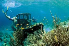 Diving in Curacao at the Santa Barbara Beach and Golf Resort #Adventure