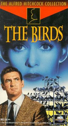 The Birds Rod Taylor, Tippi Hedren, Jessica Tandy. Alfred Hitchcock cameo: leaving the pet shop w/his 2 dogs as Tippi Hedren enters ♥ Alfred Hitchcock, Hitchcock Film, The Birds Hitchcock, Jessica Tandy, Old Movies, Great Movies, Indie Movies, Vintage Movies, Love Movie