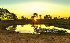 Águas de Pontal: Pantanal pode ter sua temperatura aumentada em 7°C...