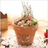 【作家さん×Acorn-Styleコラボ*】ミニチュア雑貨ブリキGarden:オシャレかわいい雑貨のお店 Acorn-Style* Planter Pots, Mini, Flowers, Royal Icing Flowers, Flower, Florals, Floral, Blossoms