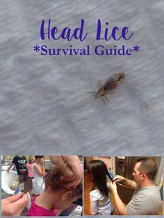 That Time We Got Head Lice and how we got rid of it.