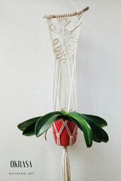 Driftwood macrame plant hanger Macrame Wall Plant Hanger Driftwood Macrame, Driftwood Wall Art, Macrame Art, Macrame Plant Hanger Patterns, Macrame Plant Hangers, Macrame Patterns, Wall Plant Hanger, Plant Wall, Orchid Plants
