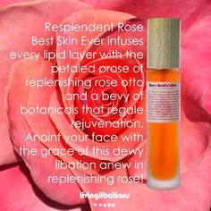 Resplendent Rose Best Skin Ever infuses every lipid layer with the petaled prose of replenish rose otto and a bevy of botanicals that regale rejuvenation. This luxurious Libation may be used as a clarifying cleanser and gentle exfoliator as well as an opulent face and body moisturizer. Anoint your face with the grace of this dewy libation anew in replenishing rose!Use Rose Best Skin Ever restore, adore, and soothe your skin that has suffered from dryness, itchiness, or redness. The… Moisturizer, Cleanser, Christmas Gift Guide, Good Skin, Face And Body, Natural Skin Care, Body Care, About Me Blog
